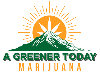 A Greener Today's message on recent vaping concerns.